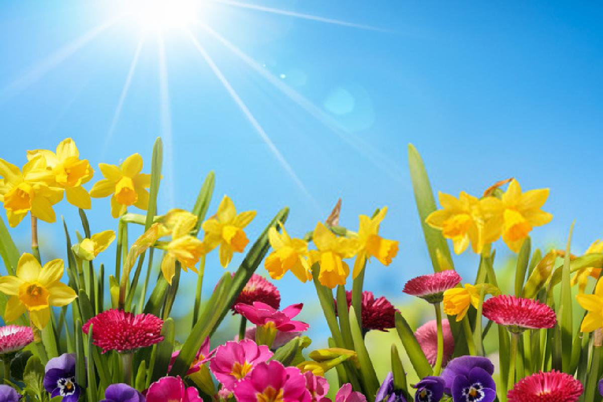 kevad luuletus 1